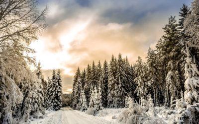 Die Energien des Winters